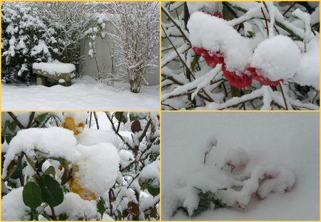 neige_20092