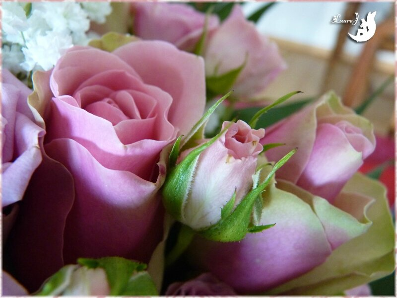 bouquet roses Maman 5