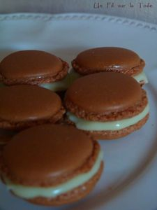 macarons_6_jpg