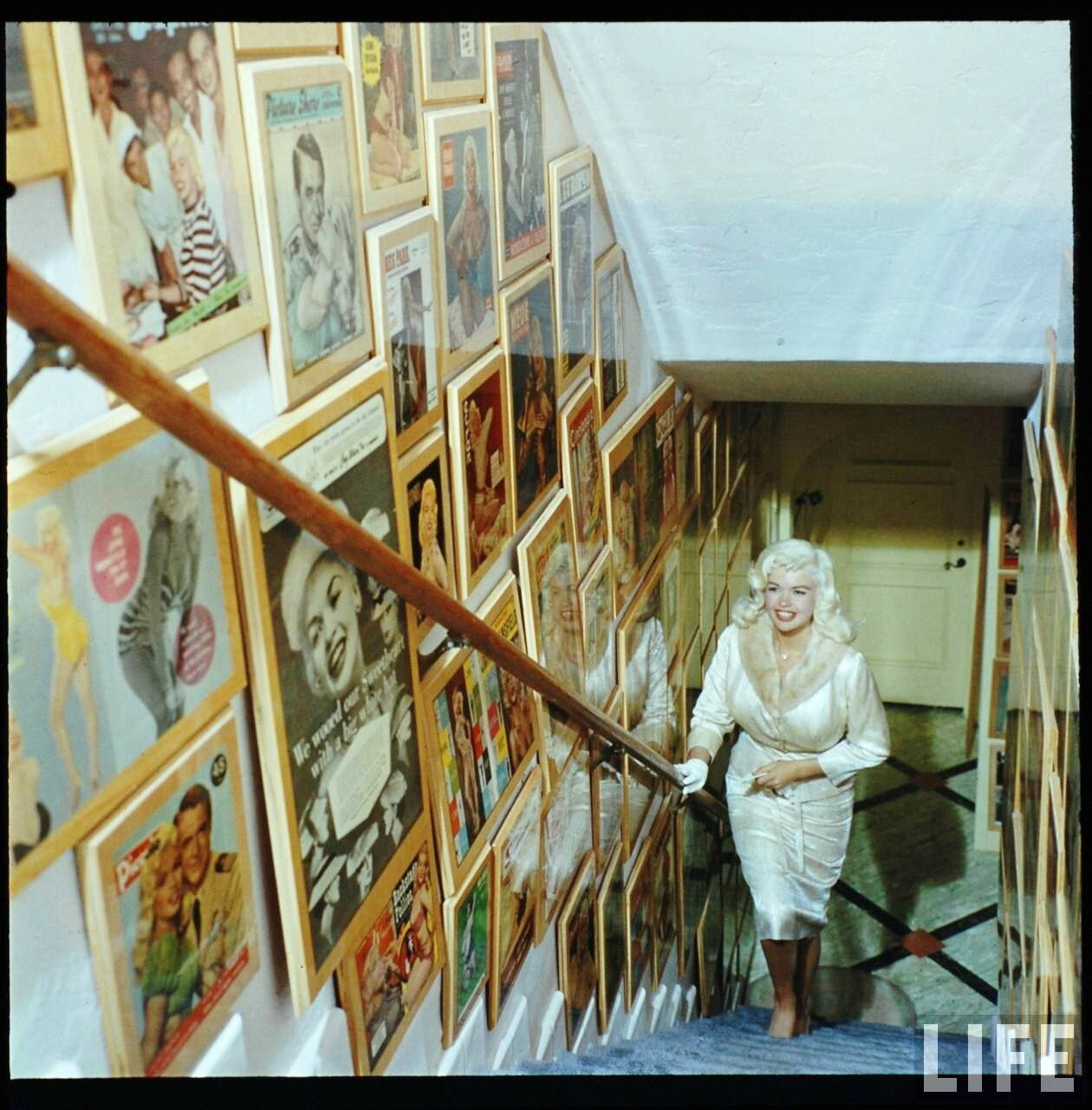 jayne_pink_palace-inside-wall_scale-by_allan_grant-1