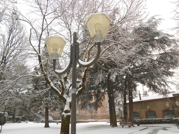 neige (9) 15 janv 2013