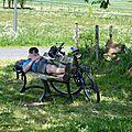 Cycliste au repos après une grosse journée de chevauchée!