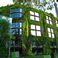 Mon top 10 paris: n°8: le musée du quai branly