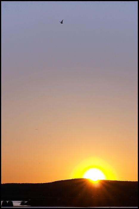 305-Soleil-presque-couché