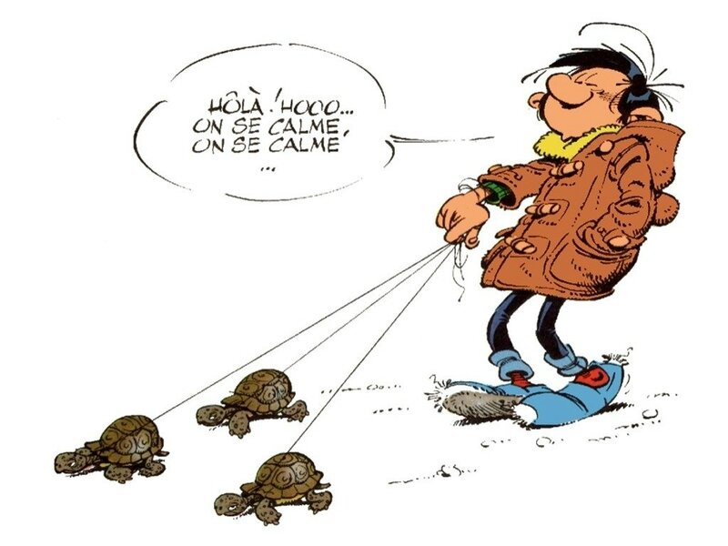 DDS 449 Gaston aux tortues