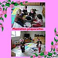 Plantation de printemps