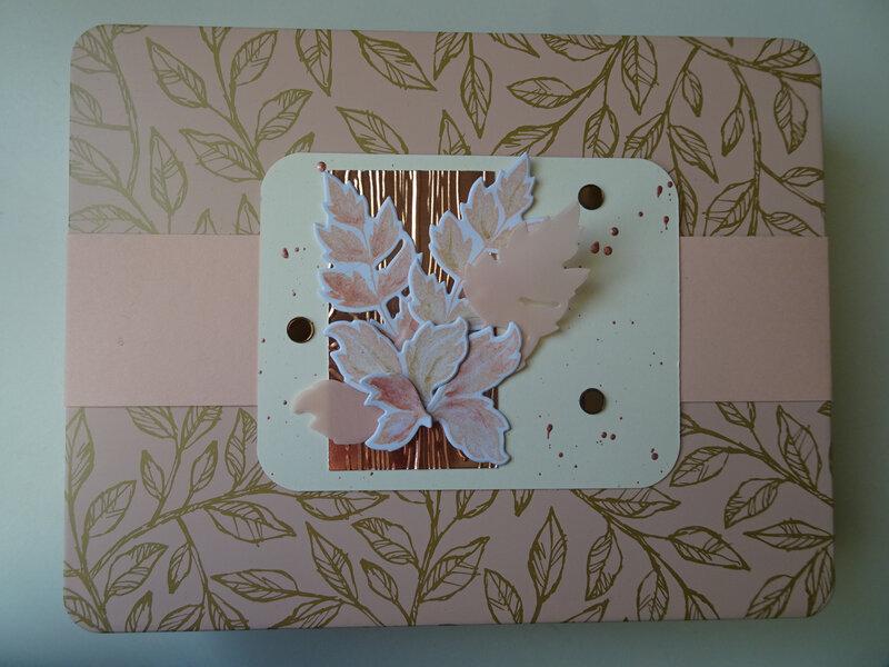 13b Boîte décorée (tout est plus rose) Cartes dentelle Balade des oiseaux
