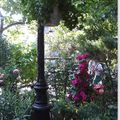 Marché aux Fleurs, petit coin ombragé