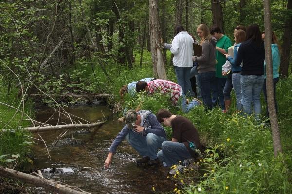 Natural Education Reserve - nature walk (1)