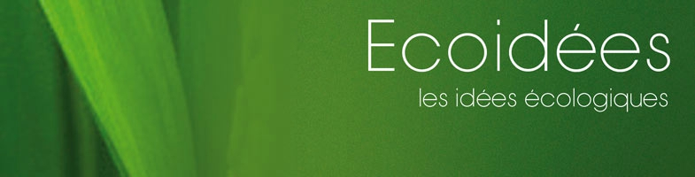 ecoidees (1)