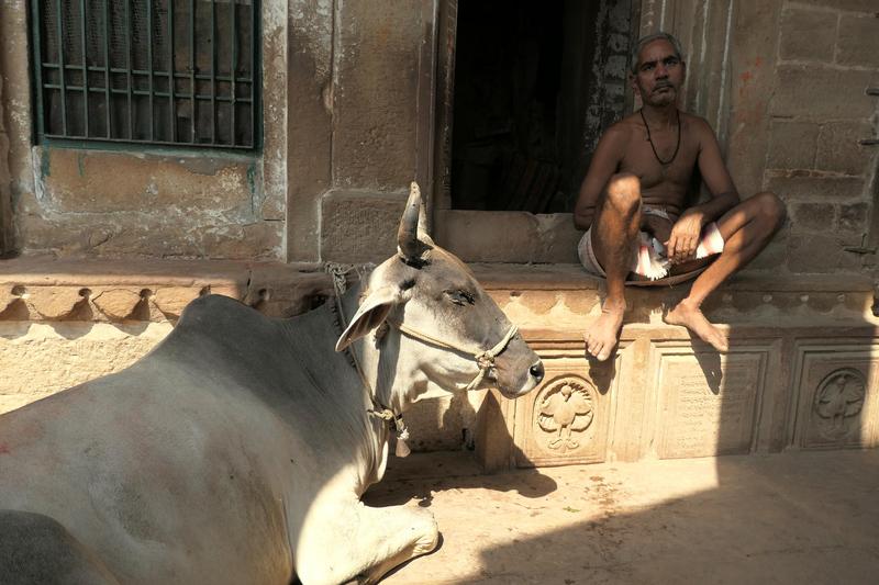 2018-10 Inde Benares Agra 236(1)