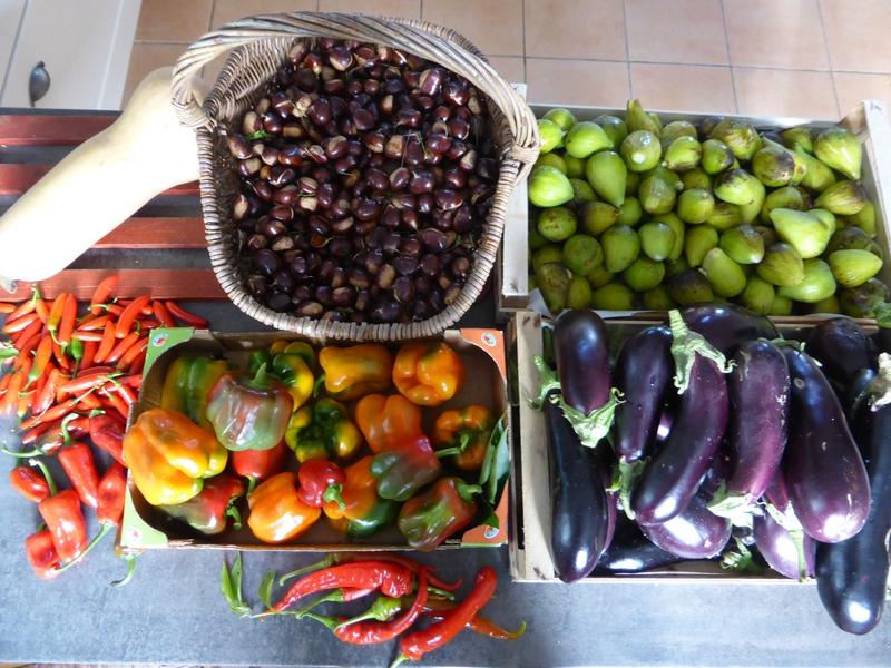 9-récolte du jour (1)