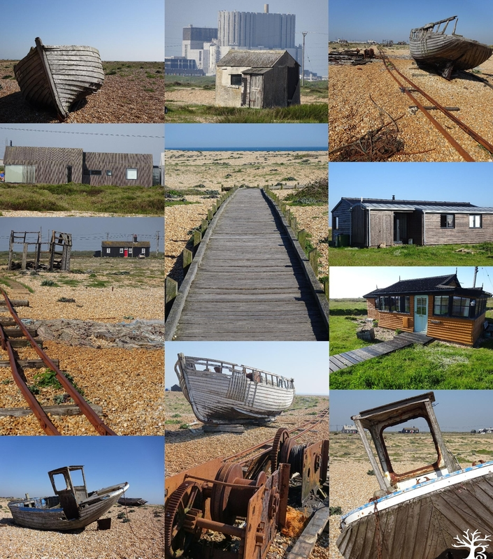 2018-05dungeness