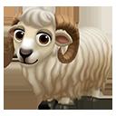 icon_sheep_adult_icelandic_128-41439102b32a35f7eb855d6cb5a18