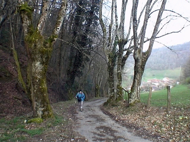 Route du vallonnet