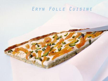 tarte_fine_parmesan_basilic_chevre_abricot_pistache4