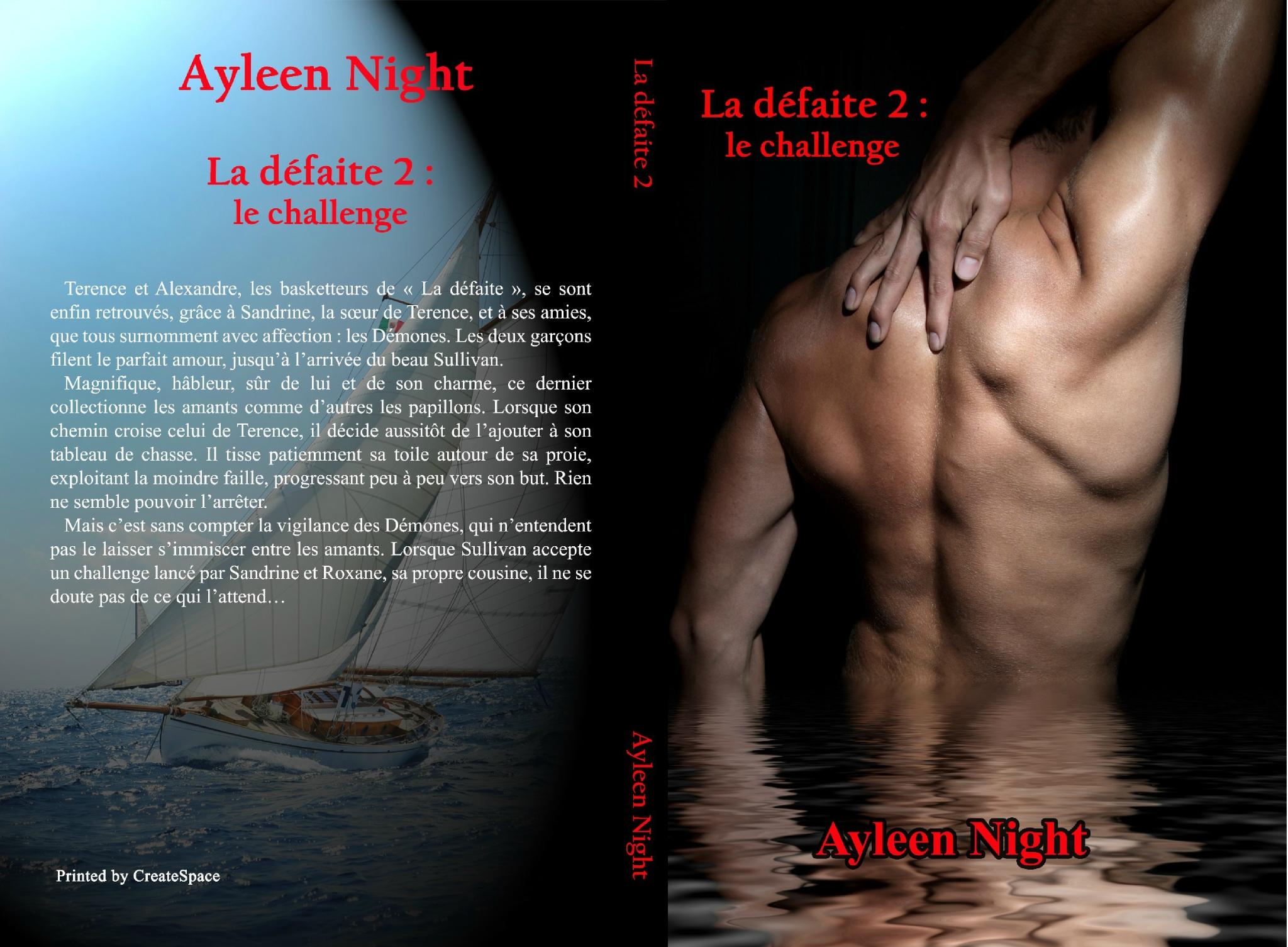 La défaite 2 : le challenge (Ayleen Night)