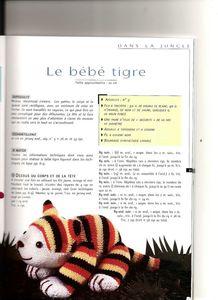 Bébé+tigre+1