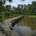 Une photo en plus du pont pour le plaisir - Chouette, non!