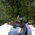 Larroque 1 MAI 2009 045