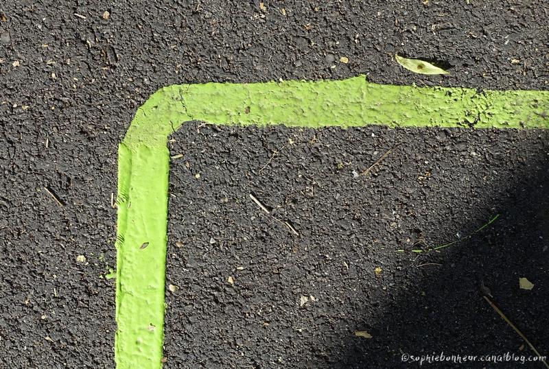 LVAN18 1 ligne verte