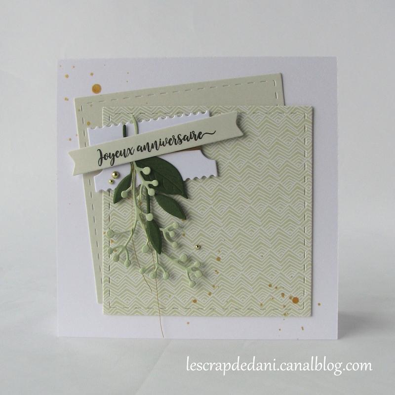 Dani carte3 anniversaire Green combo