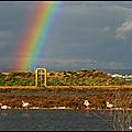 Photos du jour : arc-en-ciel sur l'étang de berre (13)