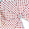 L'affaire des parapluies shinzi katoh