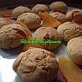 Biscuit a la mangue séché