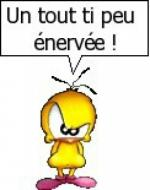 470-355-404498_227653145_un_tout_ti_peu_enervee_H222212_L