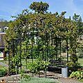 Roseraie du Jardin botanique Jean-Marie Pelt à Nancy