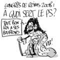 Congrès de reims 2008 : à quoi sert le ps ?