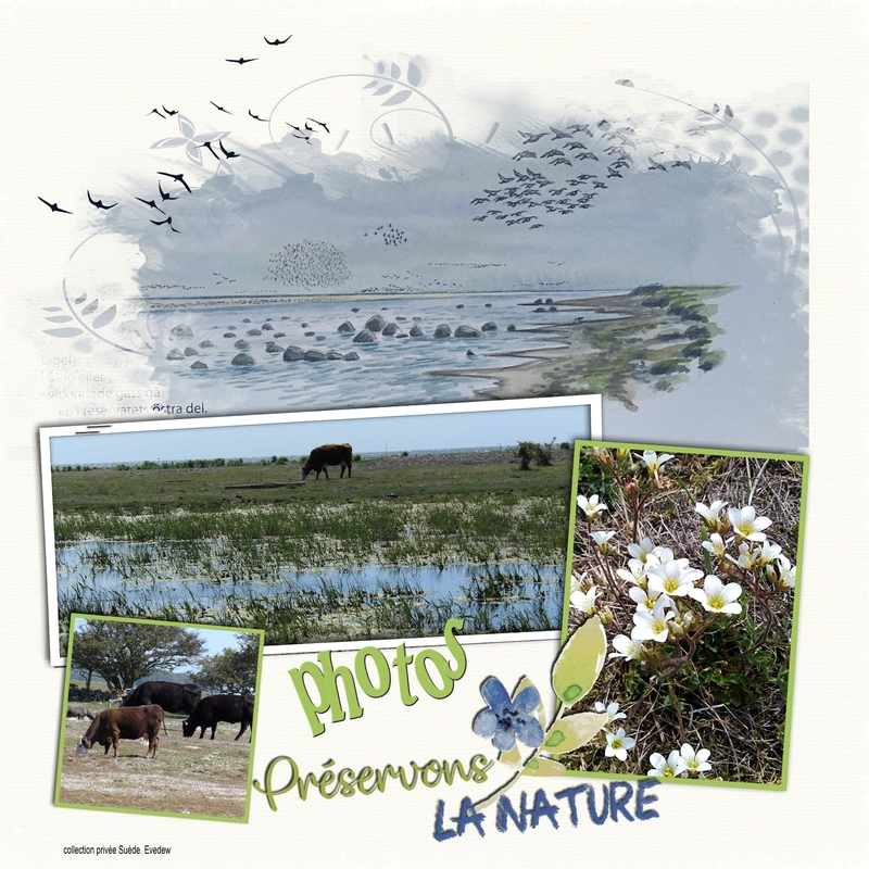 scrap photos préservons la nature