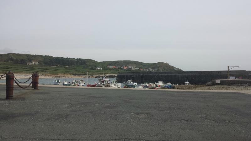 2015 05 28 - Port de Goury, cap de la Hague, la Roche (2)