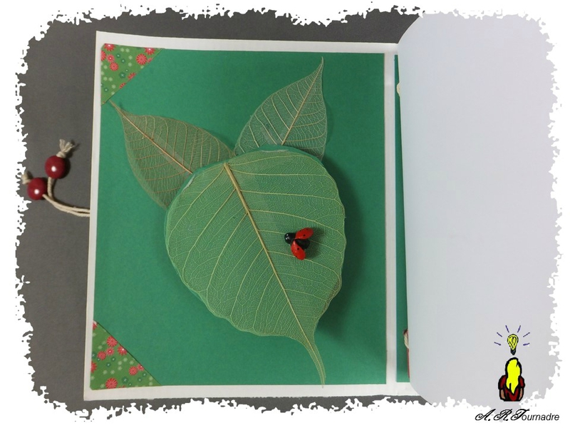 ART 2015 04 mini album coccinelle 6