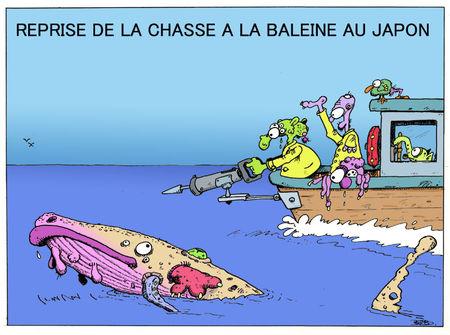 Chasse_baleine_copie