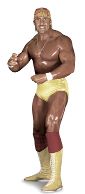 hulkhogan_1_full