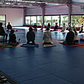 Arigato zen et kinomichi