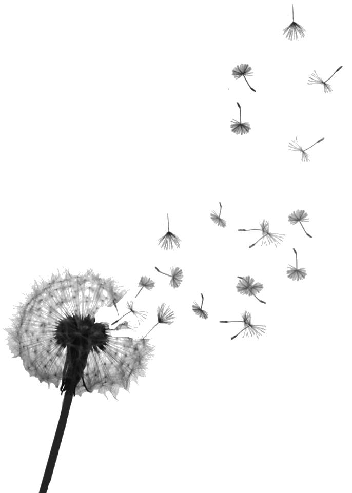 dandelion-tattoo-5