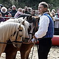 1. Fête du cheval à Lyons la Forêt 14 octobre 2012