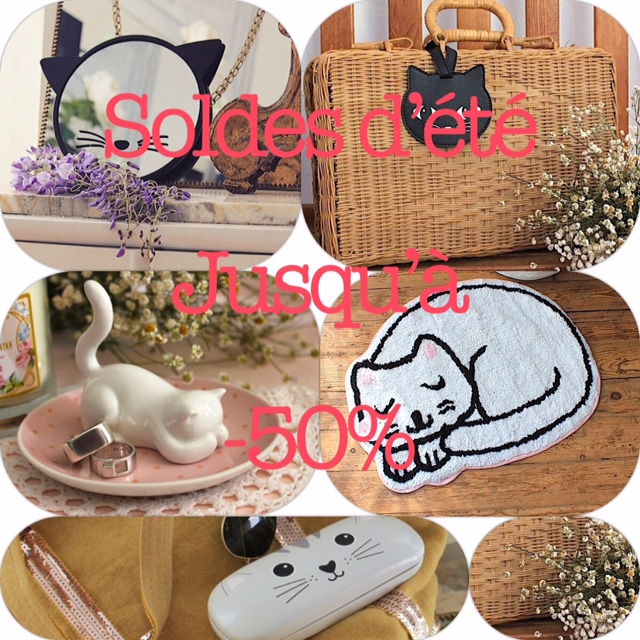 soldes chat