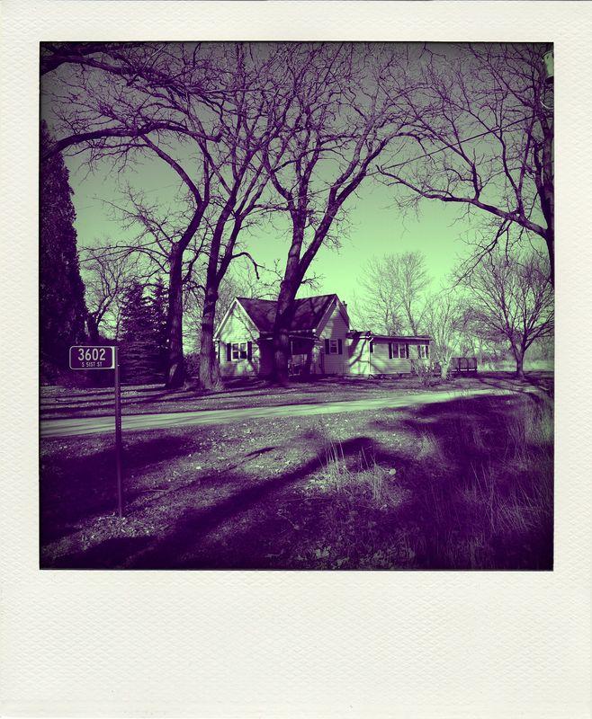 start_of_spring_065_pola