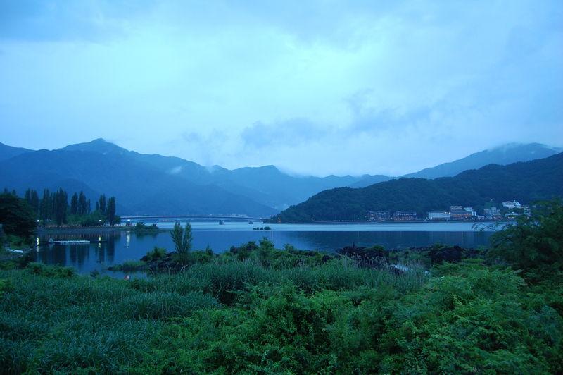 lac kawagushiko