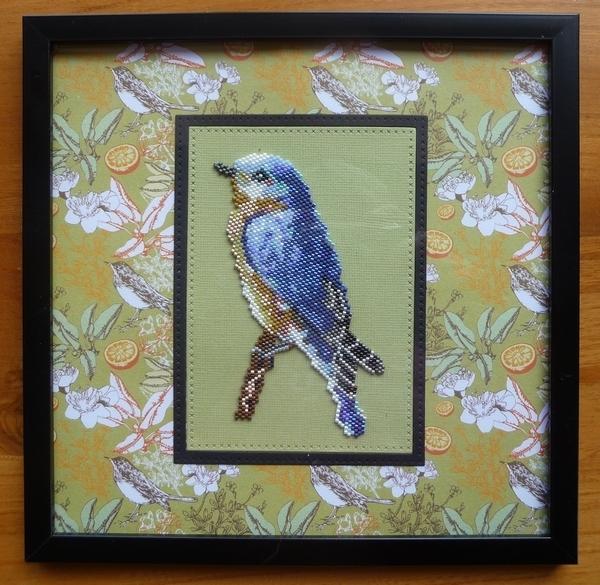 encadrement oiseau bleu