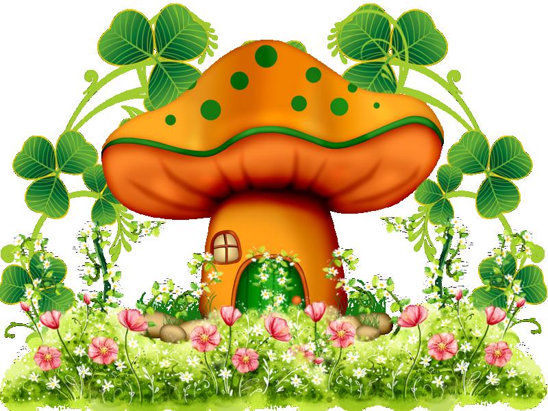 champignon st p