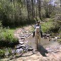 18 AVRIL 2010 FETE DU CHEVAL MONCLAR 008