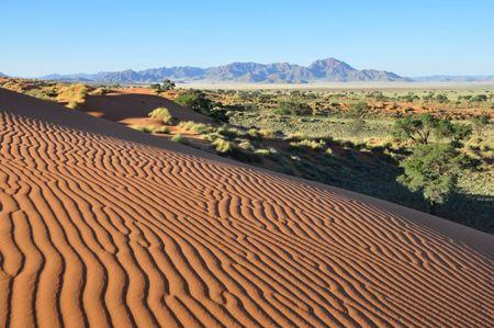 Pâques dans le Namib Rand-réduites (12)