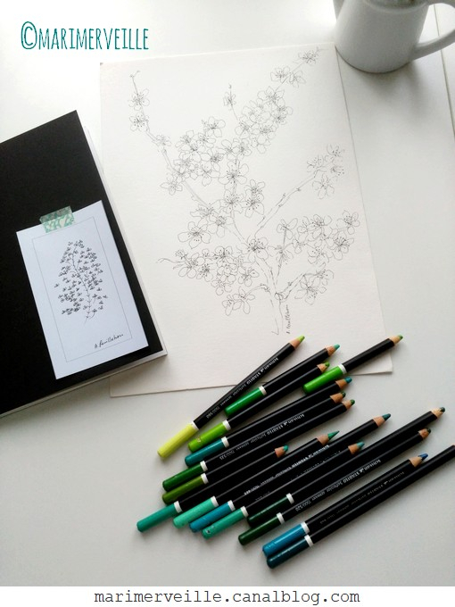 branche printanière ©marimerveille
