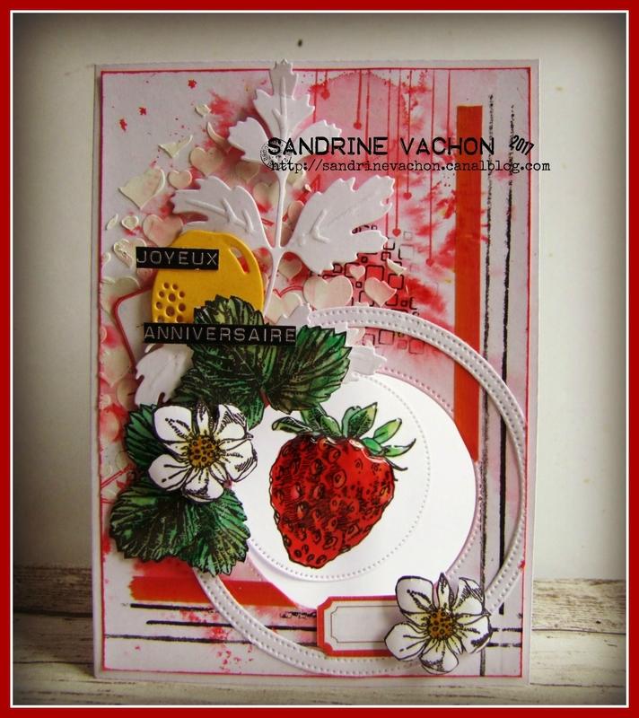 Sandrine VACHON DT PCC (1)