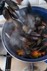 Moules-curry-vert-24